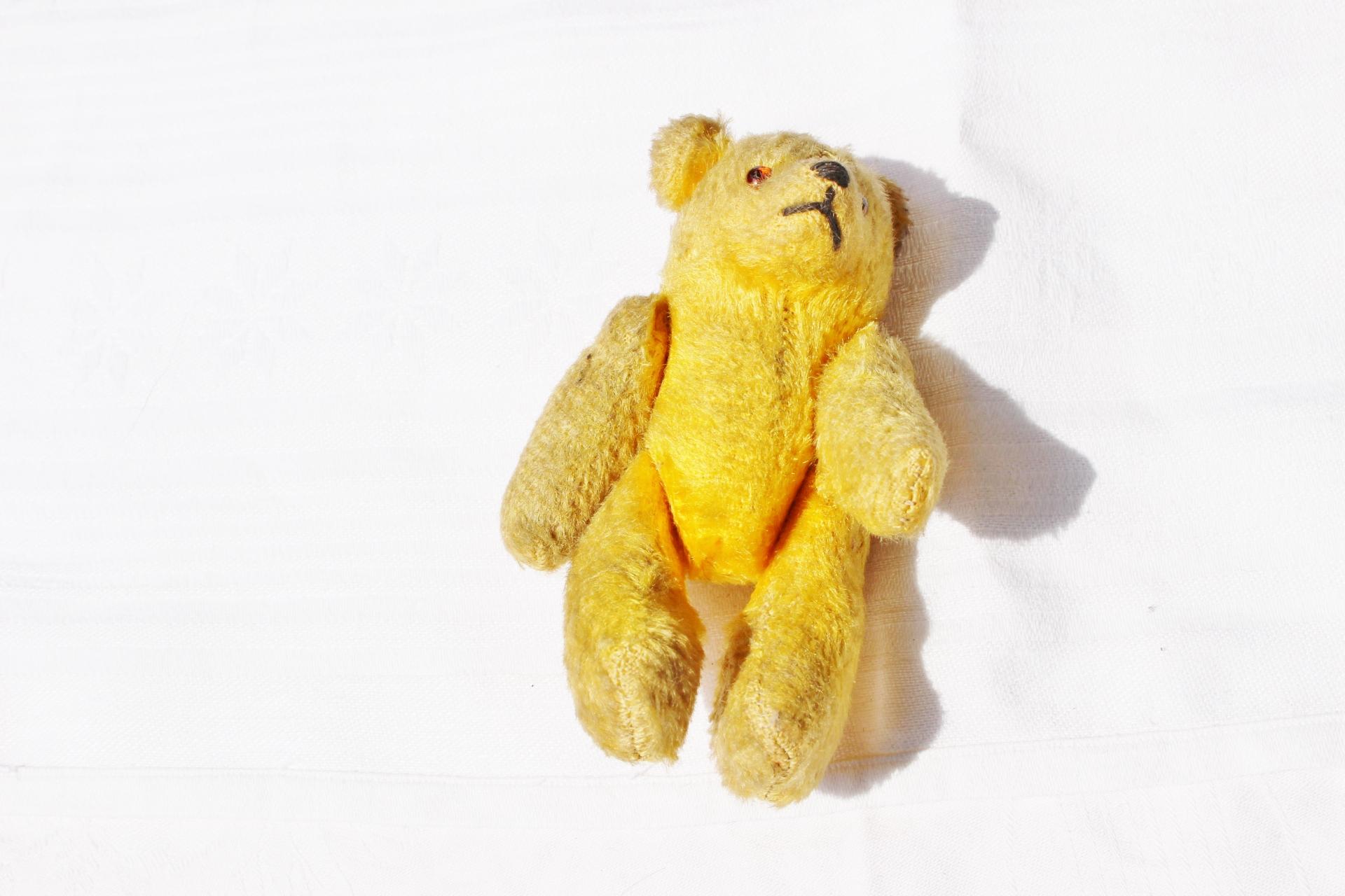Teddybären und Teddys sammeln